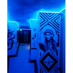 Color changing Room using LED linear lighting Blue