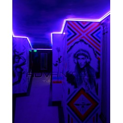 Color changing Room using LED linear lighting Purple