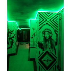 Color changing Room using LED linear lighting Green